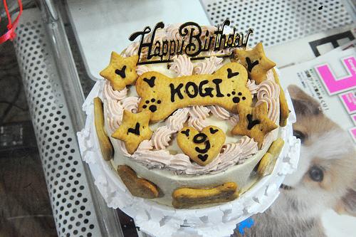 Dog Birthday Cake 5
