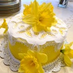 Birthday Cake and Designs 101